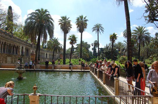 Seville Jardins de l'Alcazar (6)