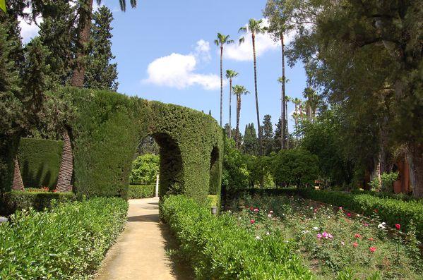 Seville Jardins de l'Alcazar (7)