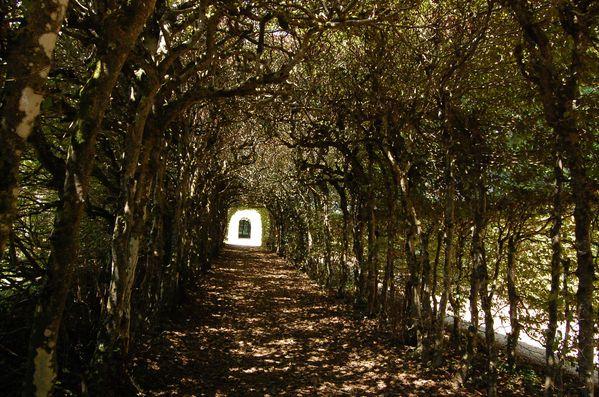 Lanvellec parc du chateau de Rosanbo (5)