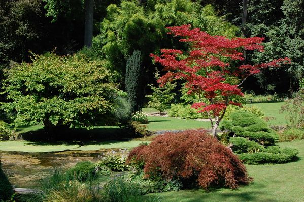 Le de france jardin japonais du ch teau de courances for Restaurant jardin ile de france