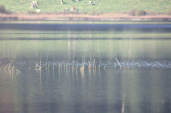lac mi-octobre 020
