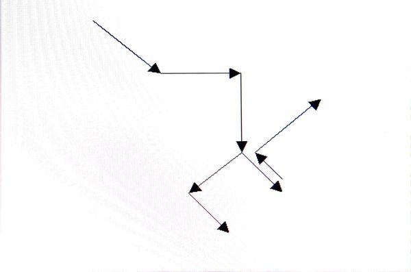 deplacetypecanislupus2.jpg