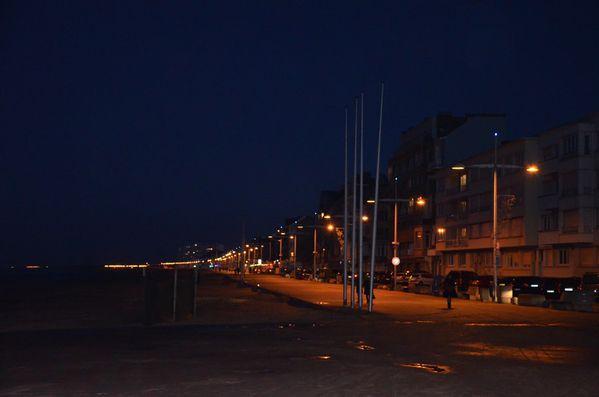27-01-2012-109.jpg