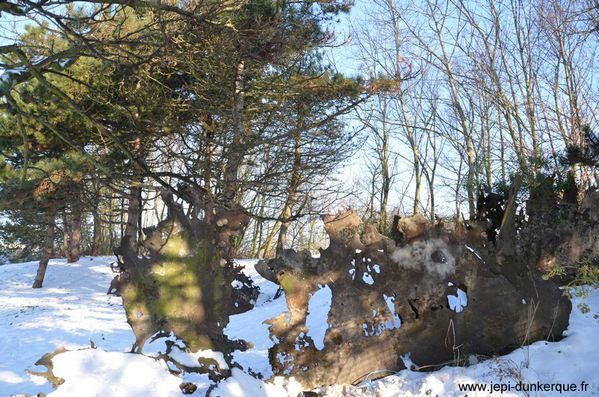 3-hiver-au-LAAC--40-.jpg