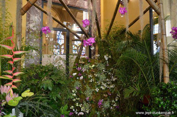 Orchidees---18-.JPG
