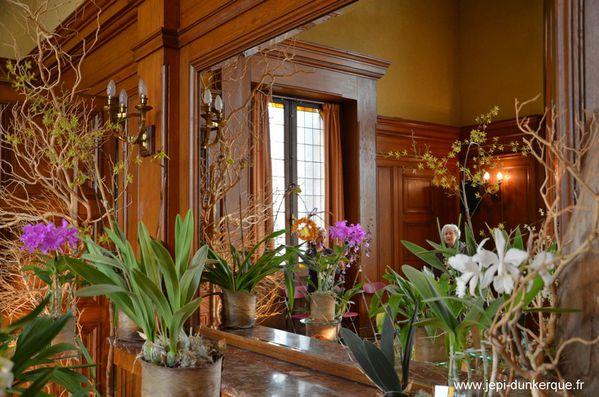 Orchidees---48-.JPG