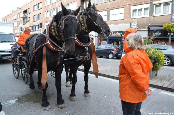 chevaux---24-.JPG