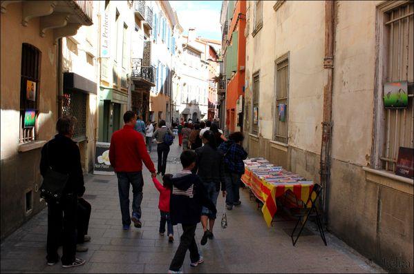 PERPIGNAN (La rue des artistes)