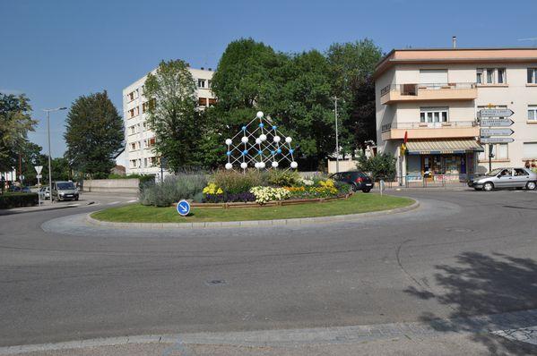 fleurs 2011 238