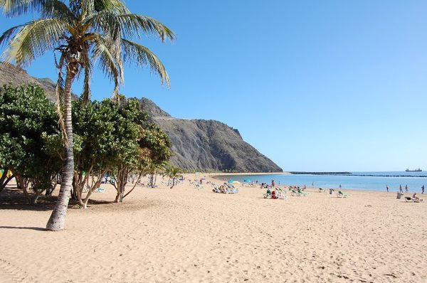 tenerife 3844 - Copie