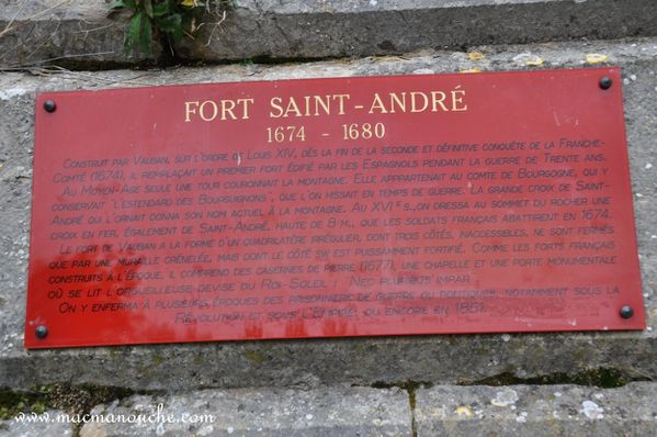 2-Fort-Saint-Andre 0061