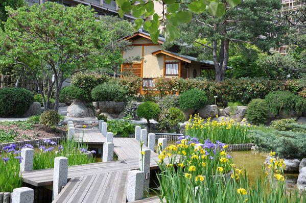 Jardin-japonais 0596