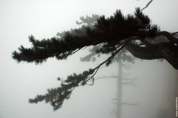 Shaanxi-Huashan - Octobre 2010 335 copy