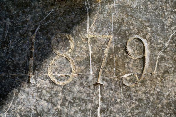 IMGP4808