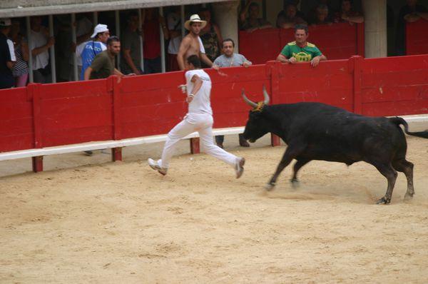 2006_Juillet_Palavas-115.jpg
