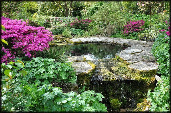 Jardin-Francois-25a.jpg