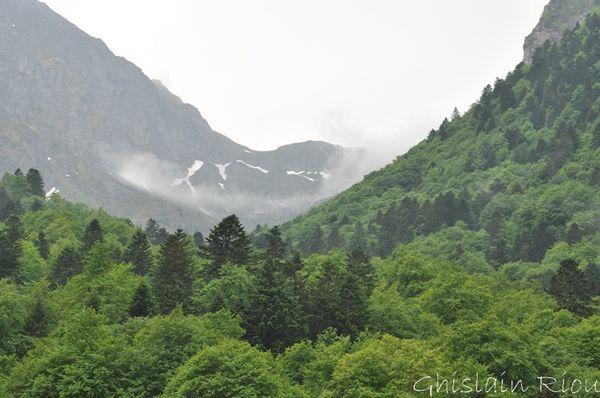 Lac-bleu-21-05-2011 0008