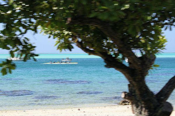 Polynesie-2011-2 7152 (800x531)