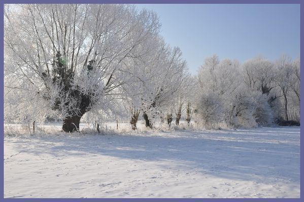 grand froid 2012 (60)