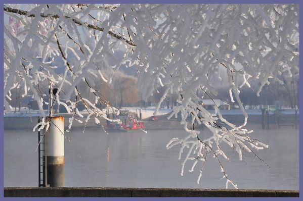 grand froid 2012 (99)