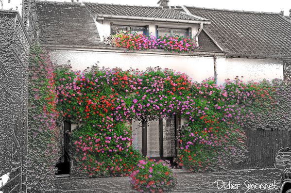 MANDRES-LES-ROSES ( Val de Marne ) Photo Didier Si-copie-1