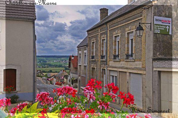 CHATILLON SUR MARNE ( Marne ) Didier Simonnet-