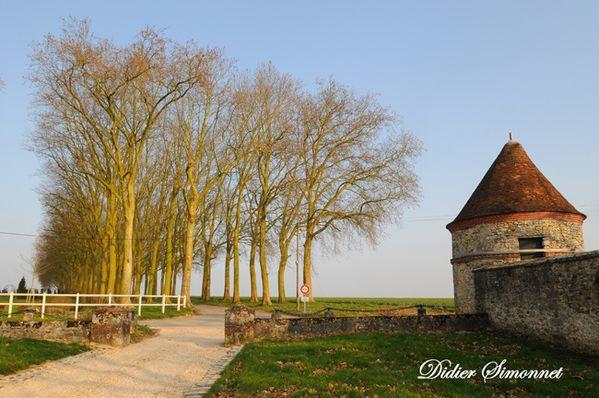 CERNEUX--Seine---Marne-.-Didier-Simonnet------copie-4.JPG