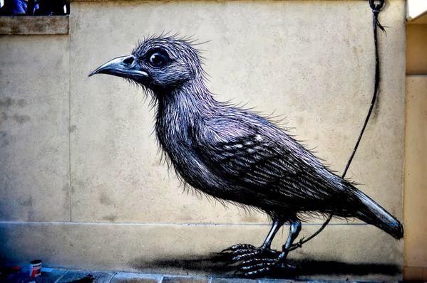 streetartnews_roa_lecco_italy-5.jpg