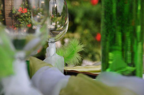 camaieu-de-vert 0214