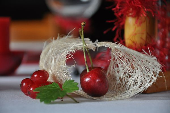fruits-rouges-et-roses-rouges 0065