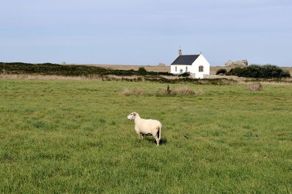 ouessant0109b047