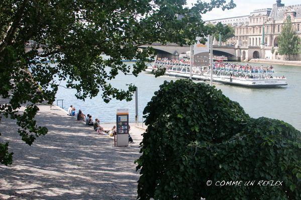 Bord-de-Seine 8218