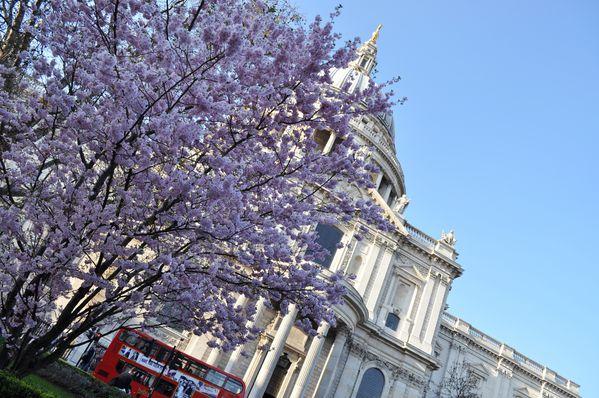 Londres 0319