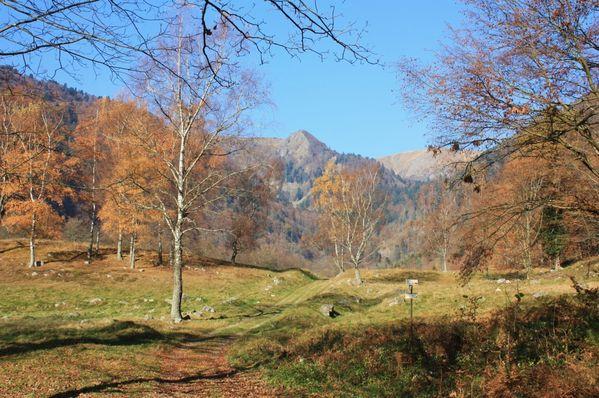 Hautes-Vosges 0322 (FILEminimizer)