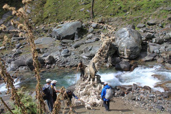 Bara-Bhangal-Trek 0864