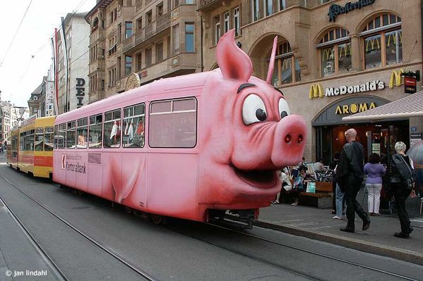 train-cochon.jpg