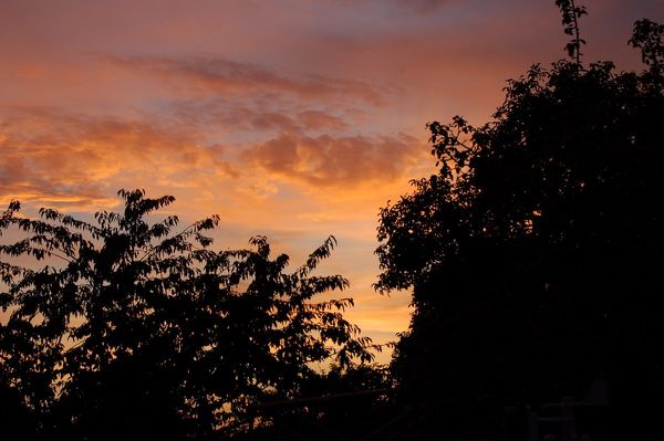 600 - coucher de soleil de juillet 5