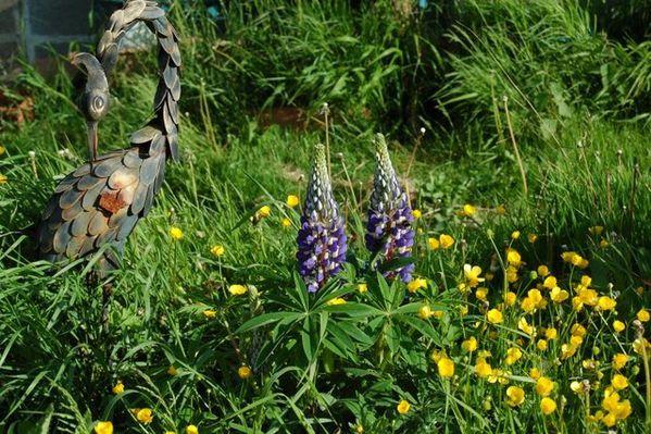 Nature-et-jardin-24 0356