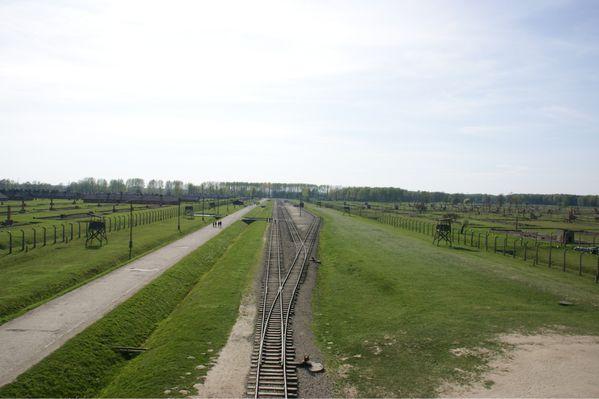 Auschwitz birkenau pologne (48)