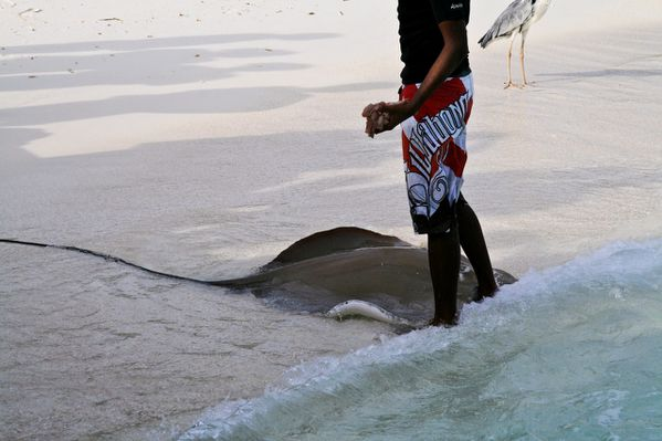 Maldives 2 Tour21