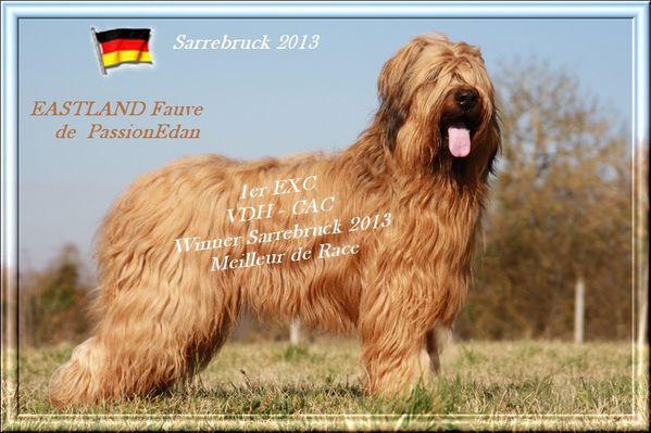EASTLAND Sarrebruck