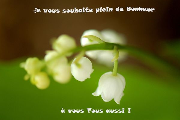 muguet-veronique-copie.jpg