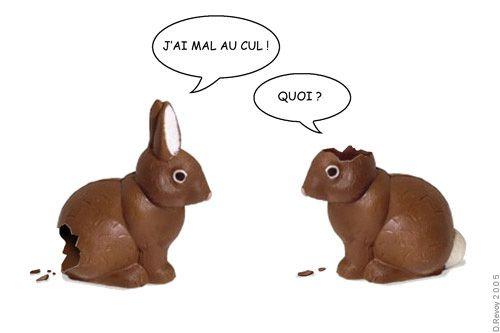 carte-paques-lapins.jpg