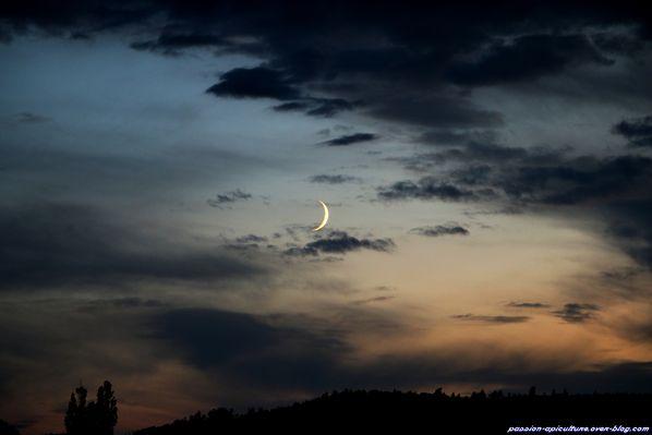 Ambiance-nocturne-7443.JPG