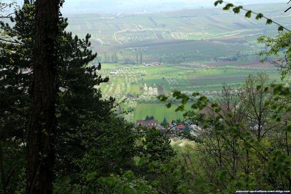 Vallée alsacienne