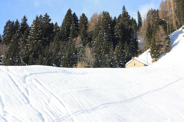 2010.01.17-Dotra-Croce-Portera 0638