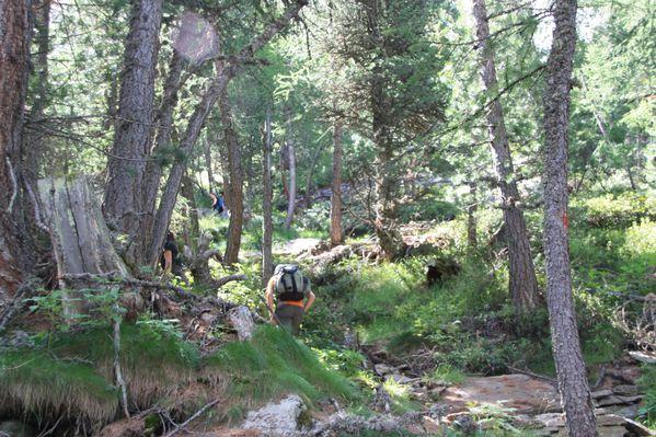 2011.07.27-Alp-e-lac-de-Loie 0776