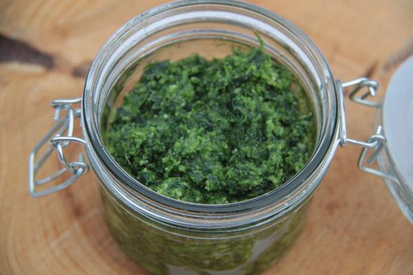 04-Avril-2013-2162-pesto-ail-des-ours.JPG