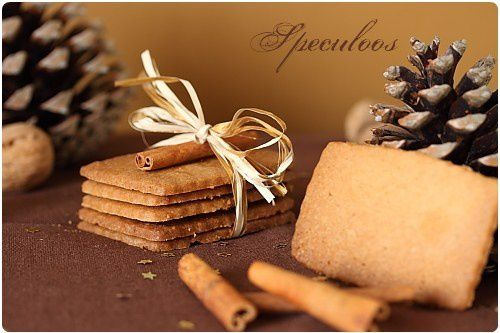 speculoos7