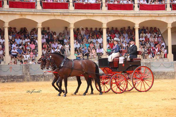 Ronda-2013-Potos-J-PONFERRADA 4764 br